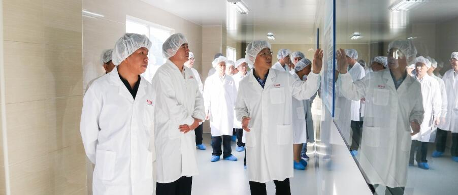 GDAS delegation visits United Lab